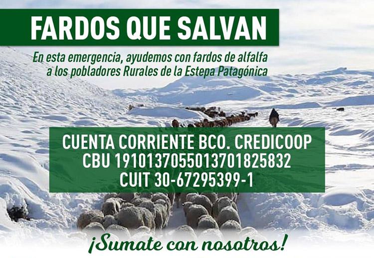 Campaña de Cáritas para evitar que el ganado muera por las nevadas